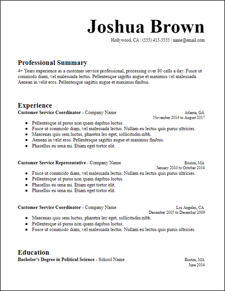 microsoft_word_longer_summary_resume_template