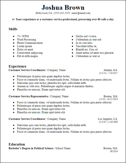 bolded professional summary microsoft word resume template